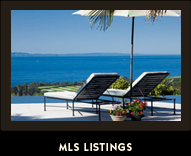 MLS Listing Search